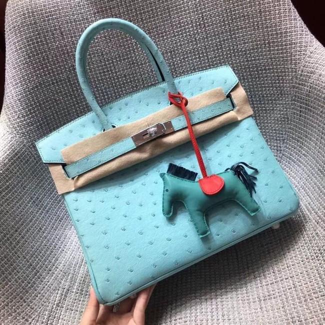 Hermes Real ostrich leather birkin bag BK35 sky blue